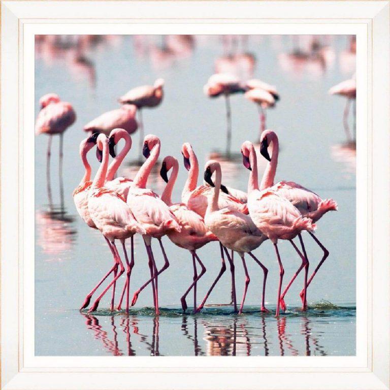 Flamingo Flock Framed Art