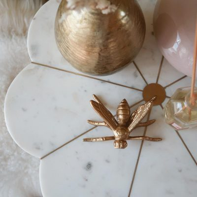 Insect Decor